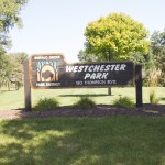 Homes for Sale in Westchester Subdivision Buffalo Grove IL